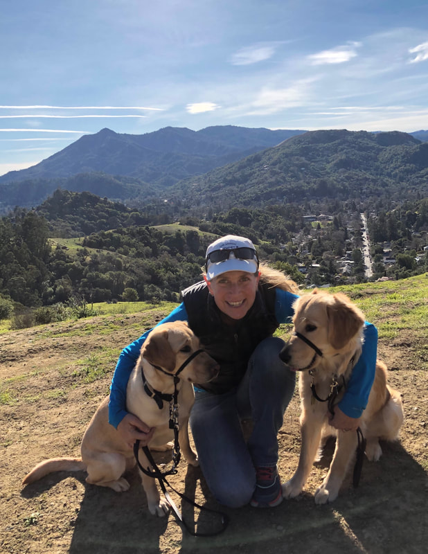Heidi's Happy Dogs